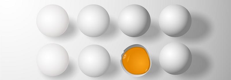 eggs-1217263_960_720